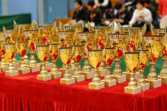 02-28-2016_hk-karate-open-2015_001_24990513819_o