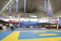 china-national-karate_17-08-16_0002_28945164482_o