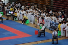 china-national-karate_17-08-16_0007_28429798624_o
