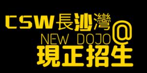 Cheung Sha Wan Dojo